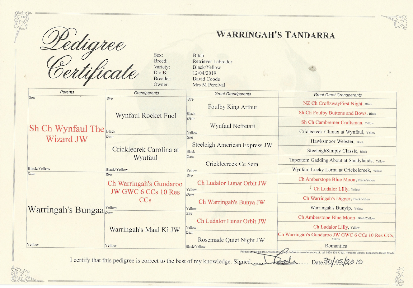 Warringah's Tandarri Pedigree